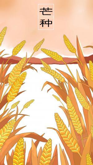 二十节气芒种农作物成熟收割时节