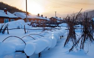 二十四节气之小雪高清雪景桌面壁纸