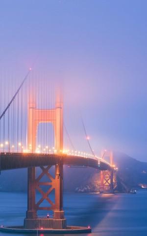 著名的金山大桥