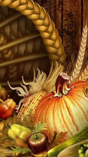 感恩节美食插画