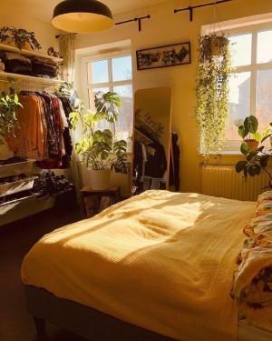 阳光照进卧室
