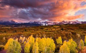 二十四节气之秋分清新唯美风景桌面壁纸