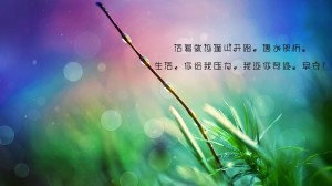 早安心语励志的一句话图片