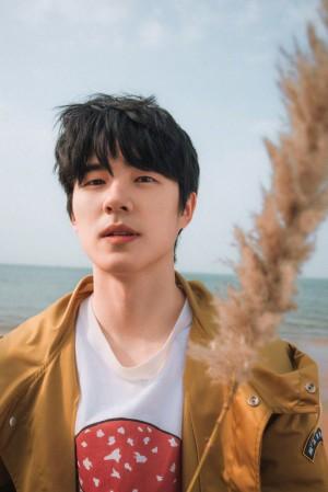 刘昊然春日呼吸感写真