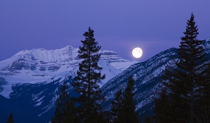 唯美的月亮写真图片