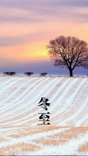 二十四节气之冬至节日手机壁纸