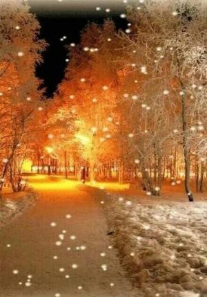 昏黄路灯下雪景覆盖的建筑美景图片