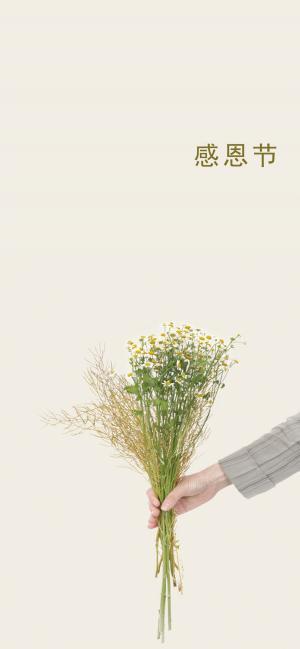 感恩 送你一束花