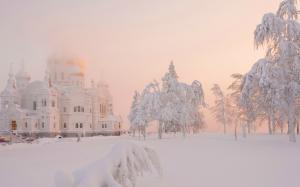 二十四节气之大雪唯美好看自然雪景电脑壁纸