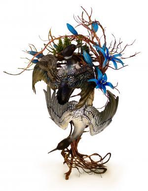 艺术家Ellen Jewett的瓷器生物雕塑