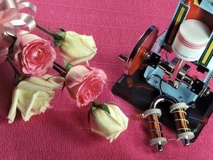 鲜花与仪器 第一辑
