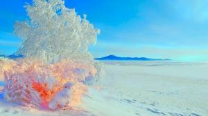 冬季浪漫雪景图片