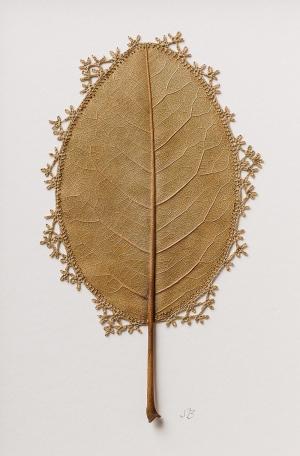使用风干了的玉兰叶编织工艺形成艺术品