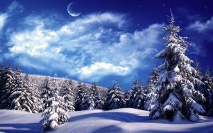 唯美雪景自然风光高清桌面壁纸
