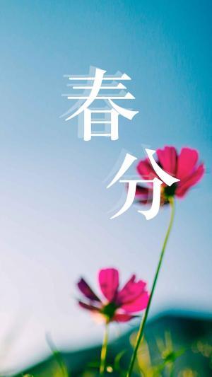 24节气春分春暖花开图片