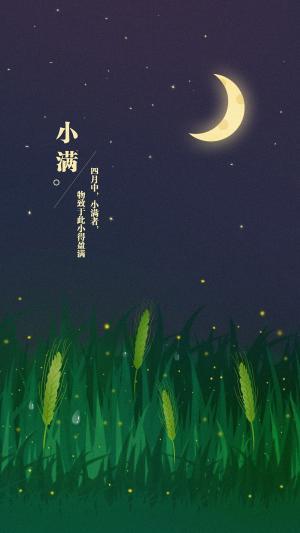 小满节气夏季月色怡人小麦渐满手机壁纸