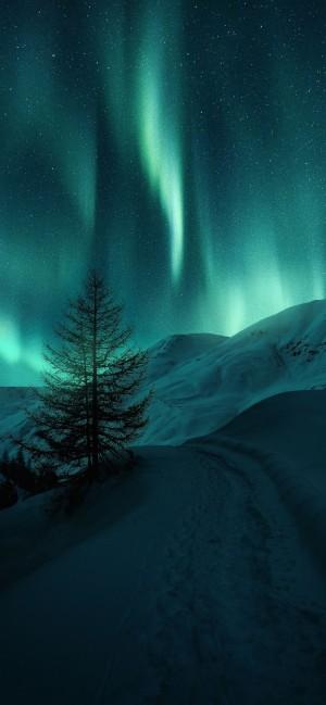 雪地上的夜与白天