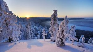 芬兰冬天雪景4k壁纸