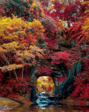 君津的秋天