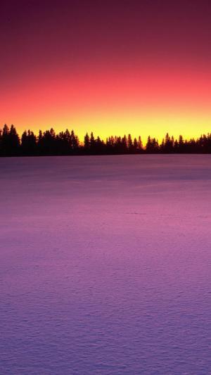 冬季唯美夕阳雪景自然风光手机壁纸
