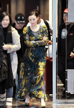 张柏芝透视纱裙活动写真图片