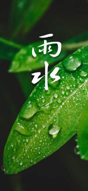 雨水节气绿色护眼手机壁纸