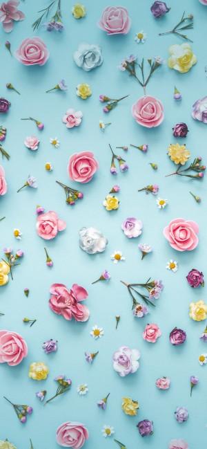 春暖花开全面屏高清手机壁纸