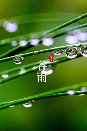 24节气之谷雨绿色护眼手机壁纸