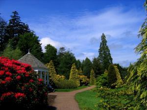 英格兰小镇上的花园风景桌面壁纸