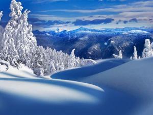 唯美冬天图片