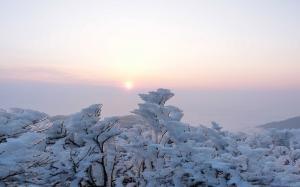 二十四节气之大雪冬日景色高清电脑壁纸