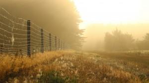 唯美高清木栅栏图片