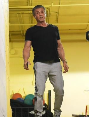 史泰龙肌肉 史泰龙肌肉图片