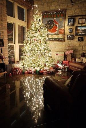 圣诞节时家里的圣诞树