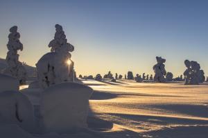 芬兰拉普兰冬天雪景
