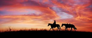 骑马的女孩 黄昏 夕阳3440x1440风景壁纸