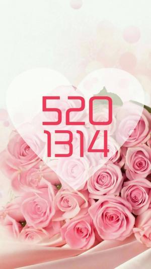 520表白日1314