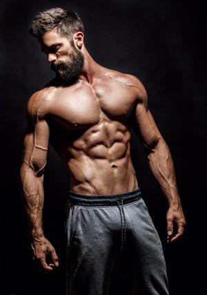 布朗特·道格赫迪(Brant Daugherty)肌肉写真