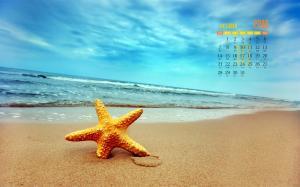 2018年10月唯美海滩贝壳海星高清日历电脑壁纸