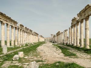叙利亚大廊柱恢宏图片