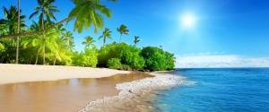 蔚蓝的大海,阳光,棕榈树,沙滩,3440x1440风景壁纸