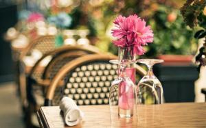 清新淡雅的鲜花图片