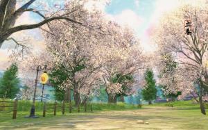 二十四节气之立春春天花朵植物电脑壁纸