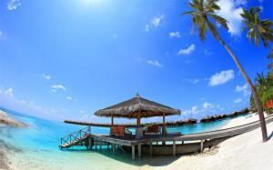 马尔代夫蓝色浪漫海洋风景图片