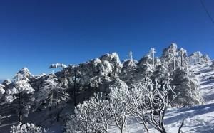 二十四节气之大雪冬日大理雪景电脑壁纸