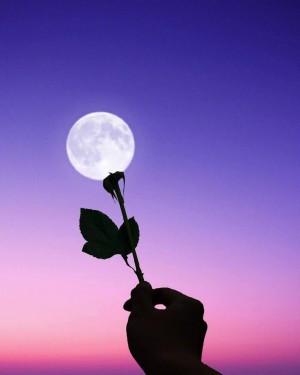 关于月亮的浪漫创意摄影图片