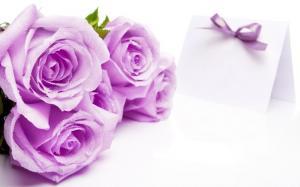 三八妇女节送花的花语