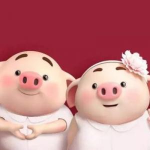 超级可爱的福猪头像图片,2019猪年新年快乐