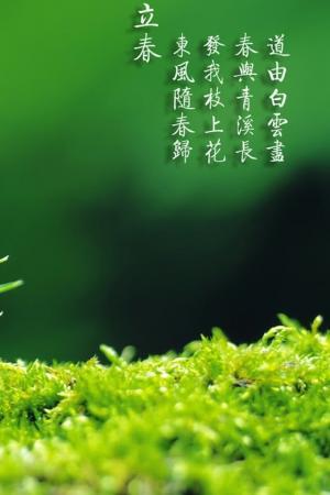 二十四节气之立春绿色养眼手机壁纸