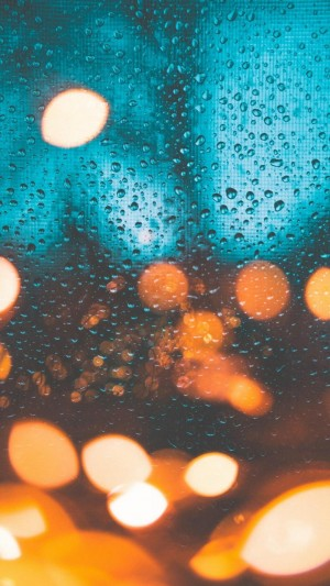 雨天的好看散景